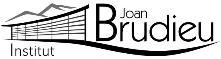 Moodle INS Joan Brudieu